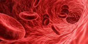 Mikroskopowe badanie żywej kropli krwi