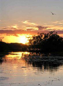 night-on-river-1385131