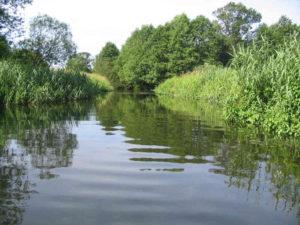 river-1550593